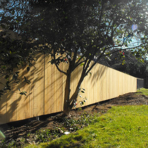 Fencing Contractors in Chico